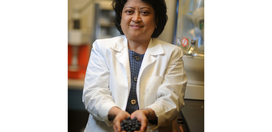 Agnes Rimando, a USDA research chemist, works at the National Center for Natural Products Research.